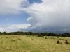 County Longford