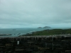 tag4ringofkerry-6
