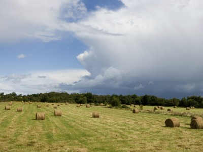 county_longford