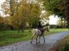 beechhillext1horse2011_1315306238