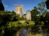 large_bc_blarneycastle_21012011_1