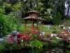 large_japanese_gardens_2_powerscourt_gardens