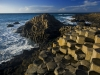 medium_bm_north_coast_061510__021